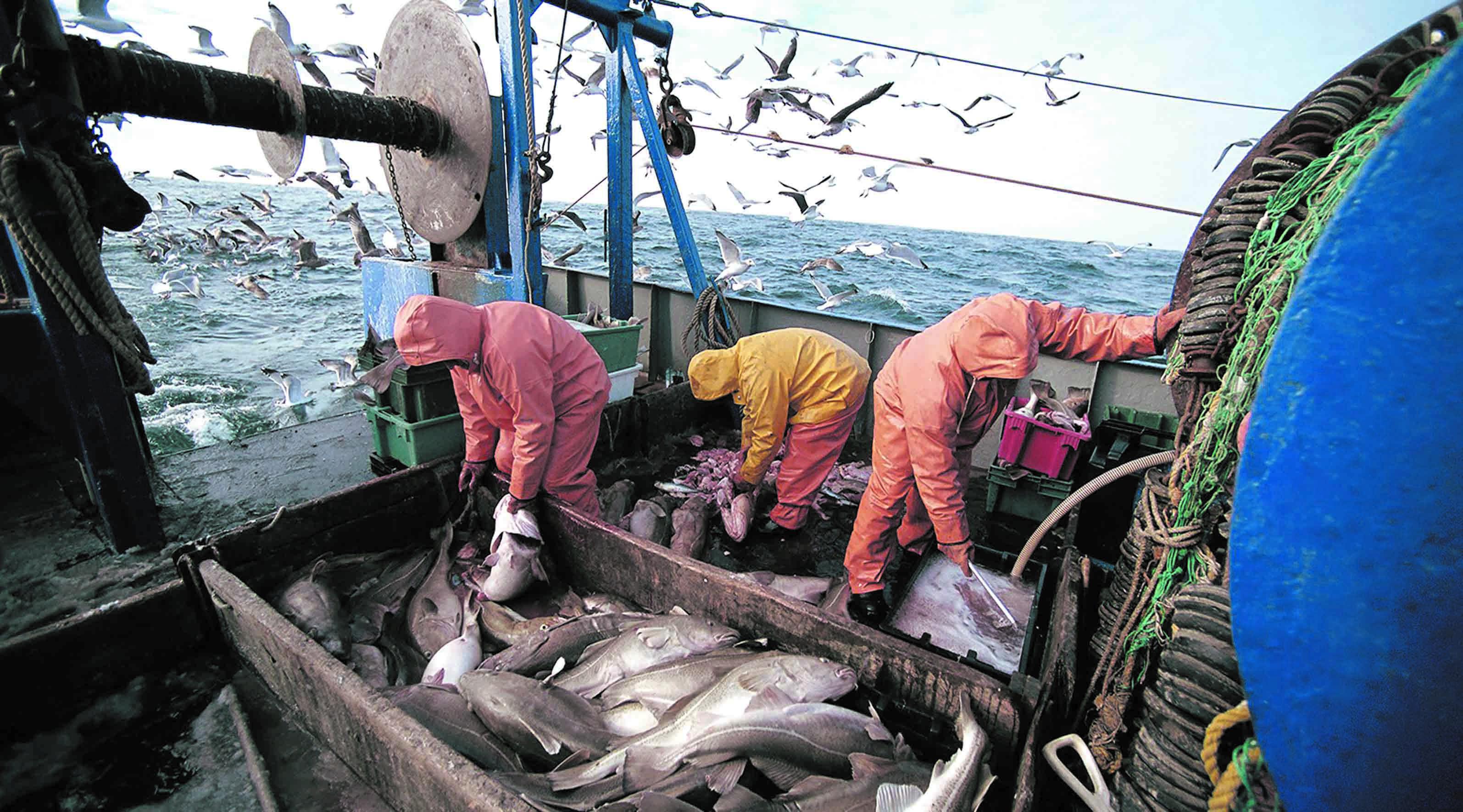 Finalisation imminente de l'accord de pêche Maroc-UE