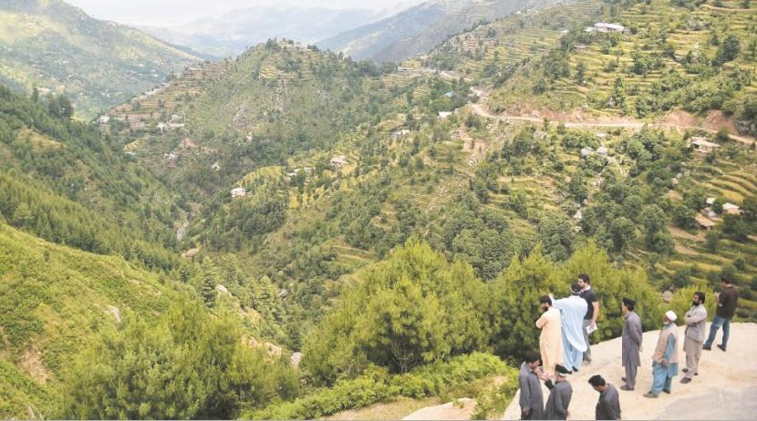 Des centaines de millions d'arbres plantés contre la déforestation au Pakistan