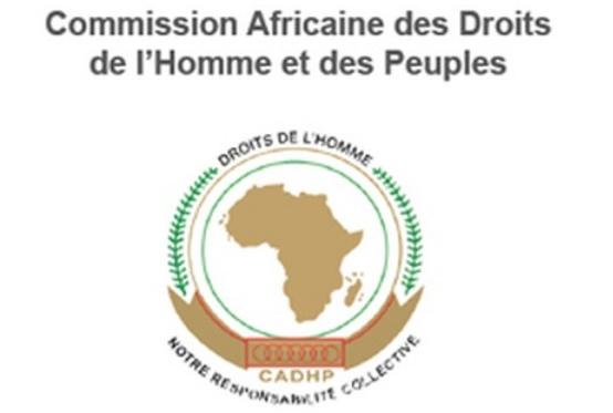 Droits de l'Homme : Les ONG nord-africaines doivent s'organiser en réseaux pour favoriser l'interaction avec la CADHP