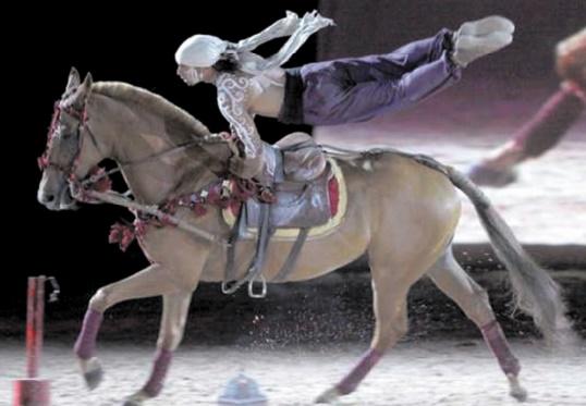 Salon du cheval : Le show hippique d'El Jadida en octobre prochain