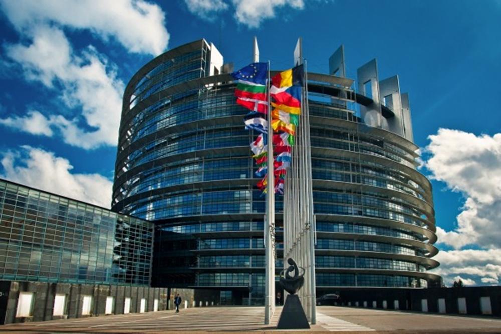 Les eurodéputés en mission dans les provinces sahariennes