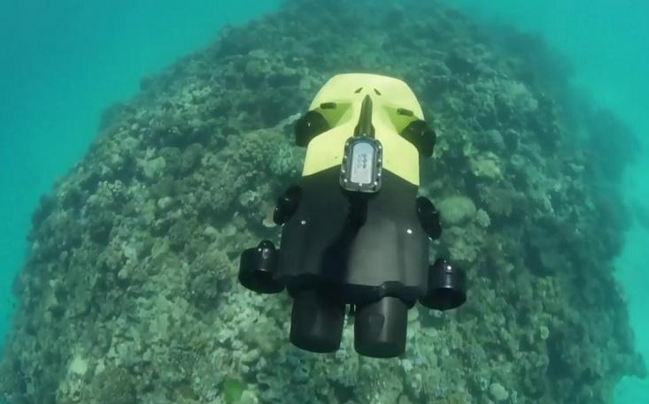 Un robot pour chasser les étoiles de mer tueuses
