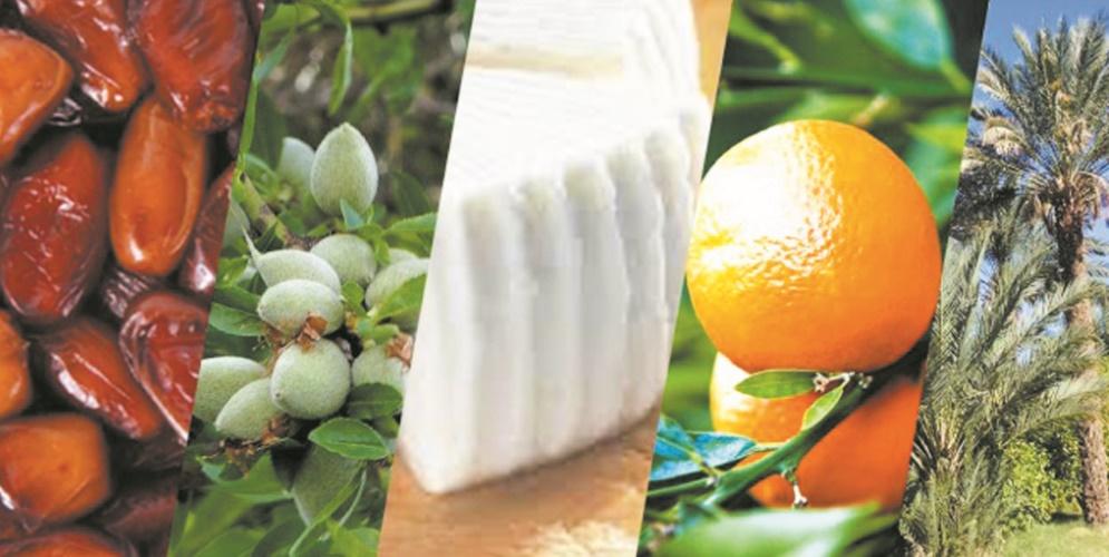 Commerce agricole, changement climatique et sécurité alimentaire