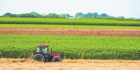 La saison agricole démarre dans des conditions favorables