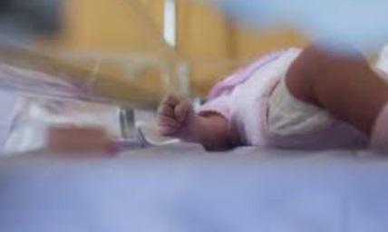 Naissance au Brésil  du premier bébé grâce à une greffe d'utérus