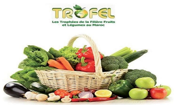Les 10èmes Trophées de la filière fruits et légumes prévus le 10 janvier à Agadir