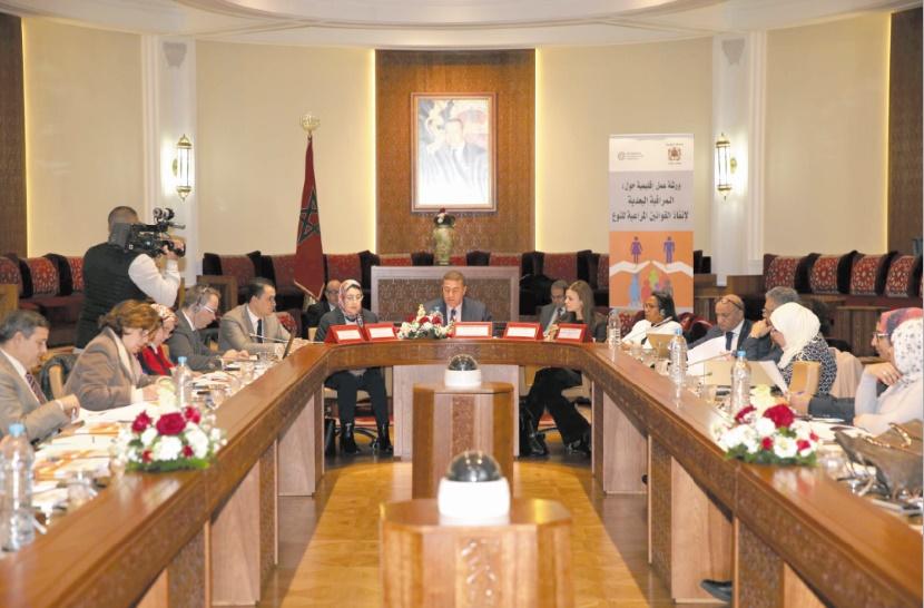 Examen à Rabat des bonnes pratiques en matière de contrôle a posteriori des lois