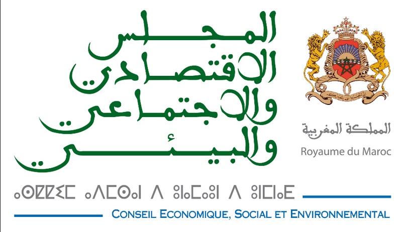 Le CESE renouvelle ses instances au titre de l'année 2019