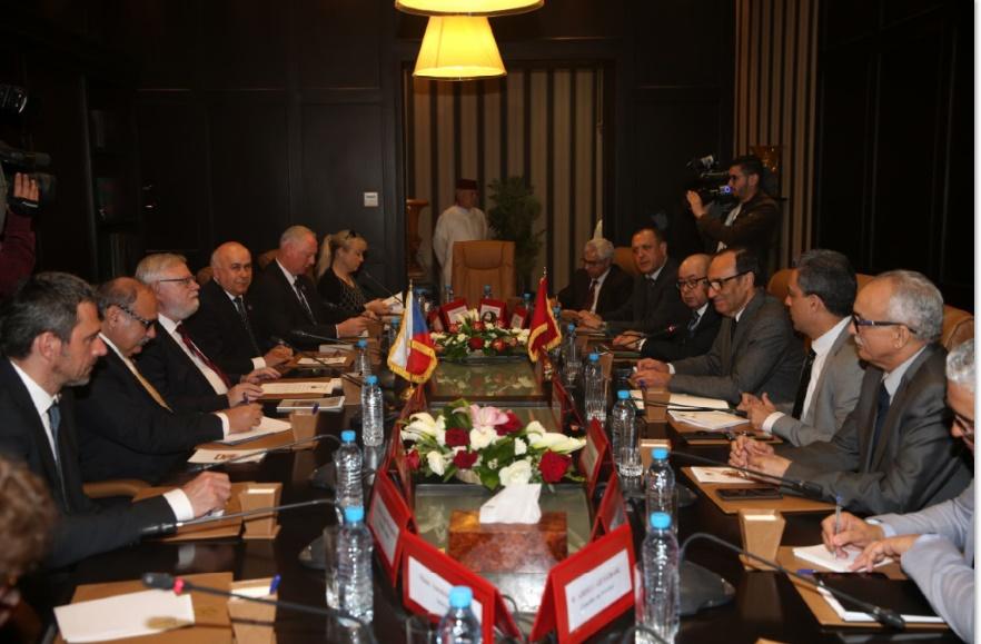 Habib El Malki s'entretient avec le vice-président du Sénat tchèque