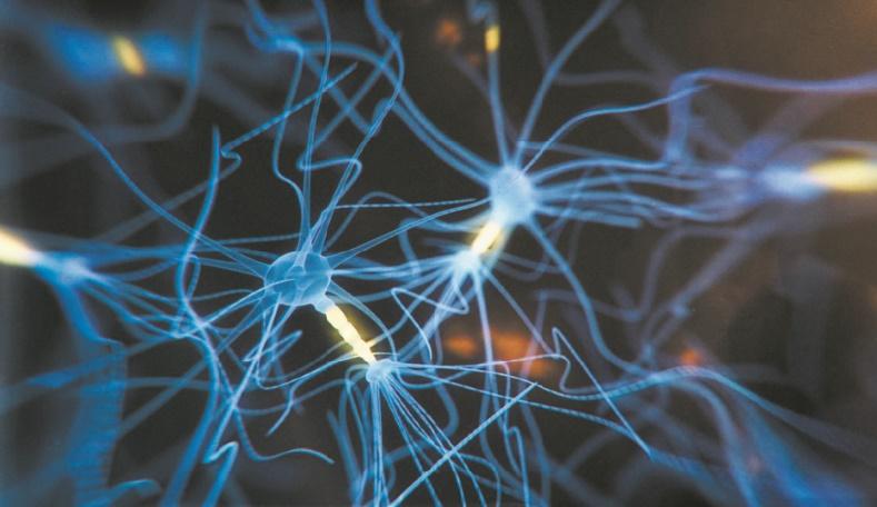 Quand un implant cérébral transforme les pensées en paroles