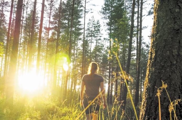 Pour protéger la nature et l'Homme, la science prône des changements profonds