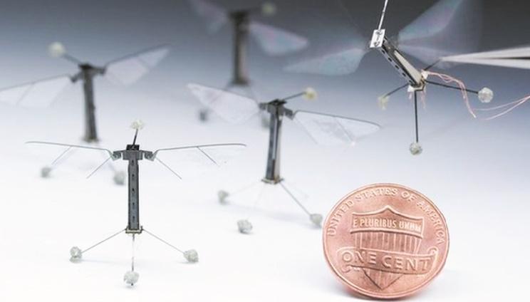 RoboBee, le plus petit robot insecte volant