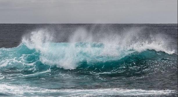 Antibiotiques, additifs alimentaires et pesticides retrouvés en mer