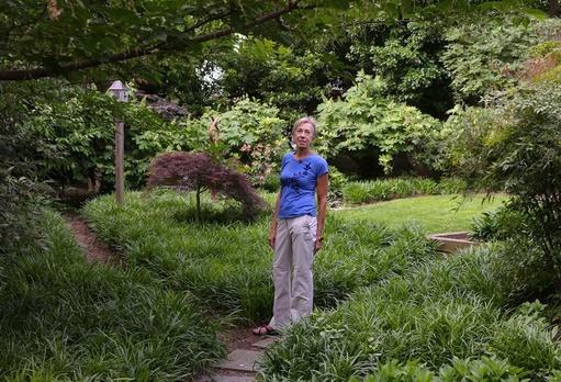 Des citadins transforment leur jardin en vraie jungle sauvage