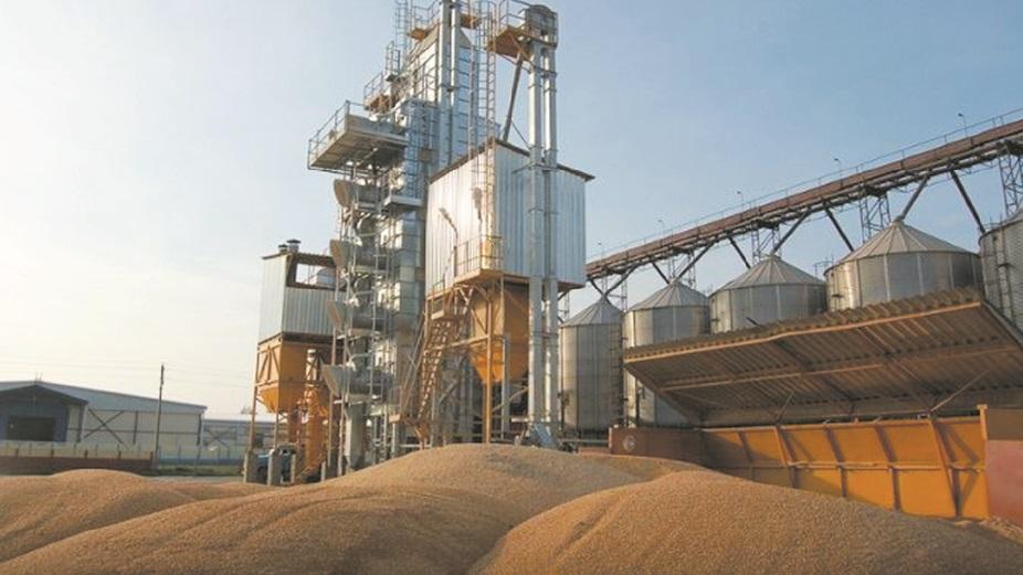 Baisse du droit à l'importation du blé