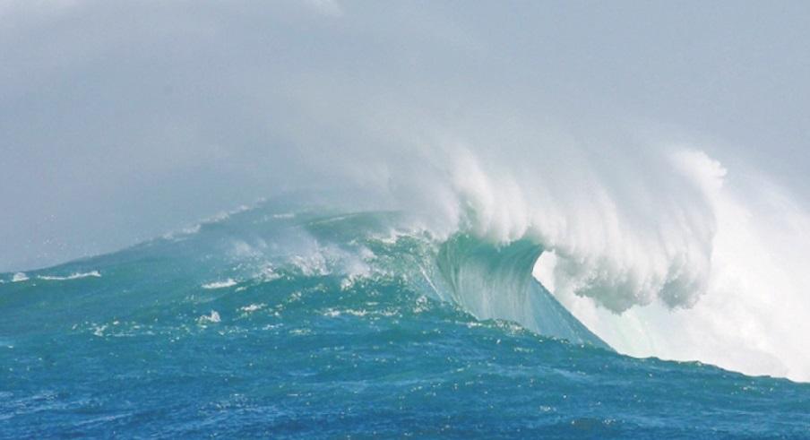 Sauver les océans pour sauver l'humanité