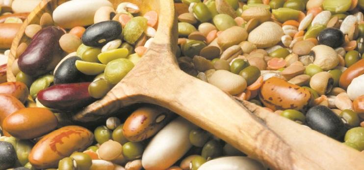 La production des céréales et des légumineuses face aux défis du climat et du marché