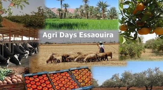 """Les produits du terroir et de l'élevage à l'honneur au Salon """"Agri Days Essaouira"""", du 8 au 10 novembre"""