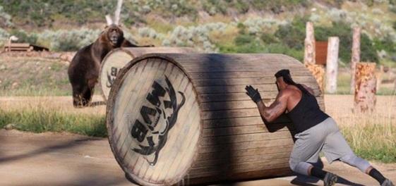 Insolite : Duel entre des ours et des hommes