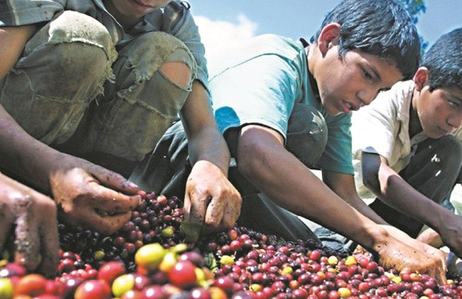 Le travail des enfants demeure préoccupant