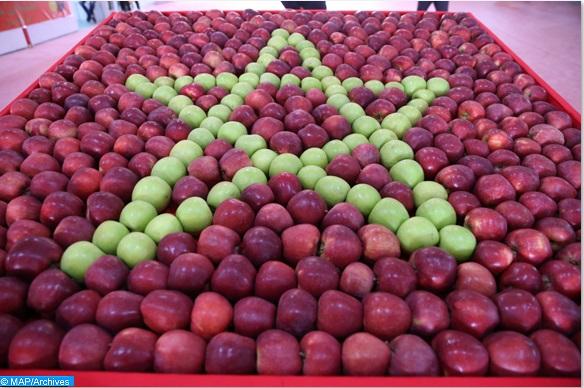 Valorisation des produits dérivés de la pomme dans la commune de Bouzmou