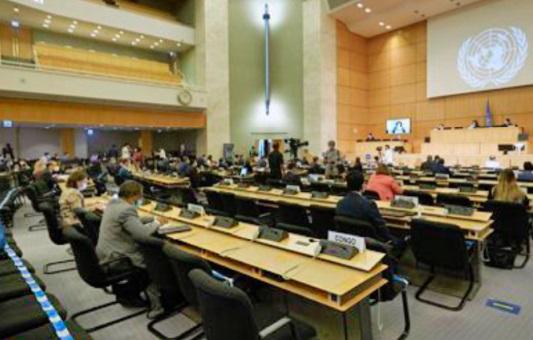 Ferme soutien à l'intégrité territoriale du Maroc devant le CDH