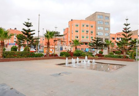 La propagande algéro-polisarienne disséquée en visioconférence