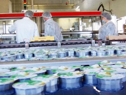 Appel à transformer le marché agricole  marocain en un marché du pull