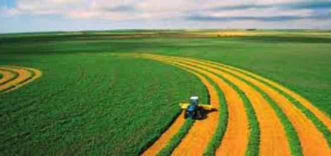 L' agriculture, pièce-maîtresse de la relance économique