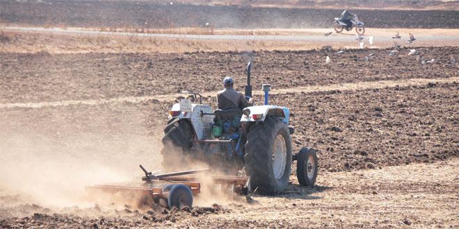 Les précipitations font le bonheur des agriculteurs
