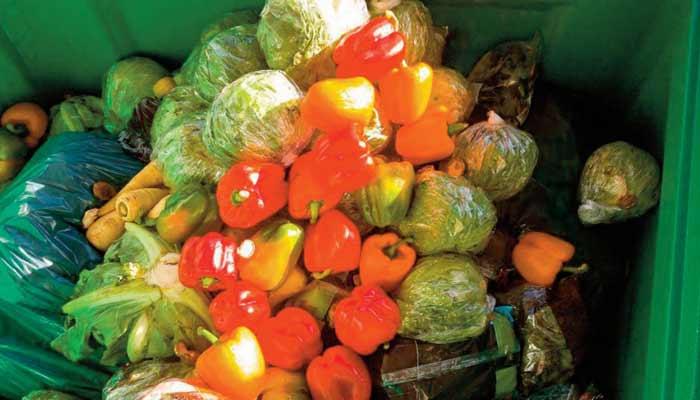 Le gaspillage alimentaire, une grosse calamité du 21ème siècle