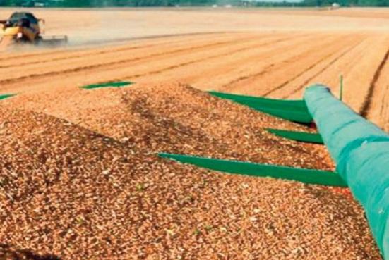 Des mesures incitatives à la commercialisation de la production céréalière