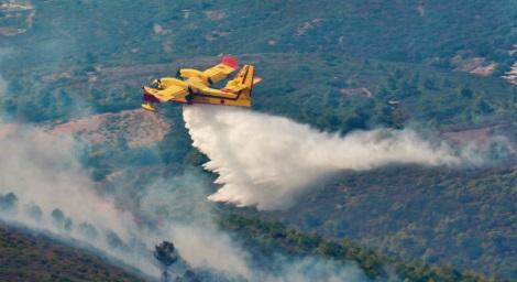 Le feu de forêt presque sous contrôle dans la province de Chefchaouen