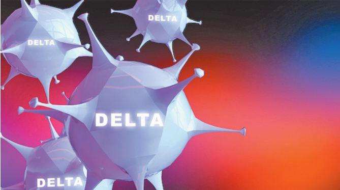 Le désespoir du Delta du Japon