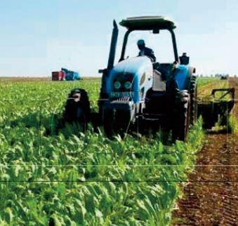 L'expérience marocaine en matière d'innovation agricole mise en avant à Rom