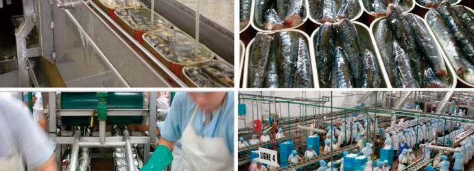 L'industrie de la conserve de poisson est mal en point