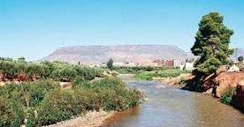 Relancer le patrimoine écologique et naturel de Khénifra