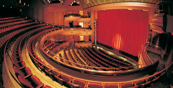 Vers l'institutionnalisation du théâtre professionnel