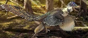 Un gros cousin du Velociraptor découvert en Chine