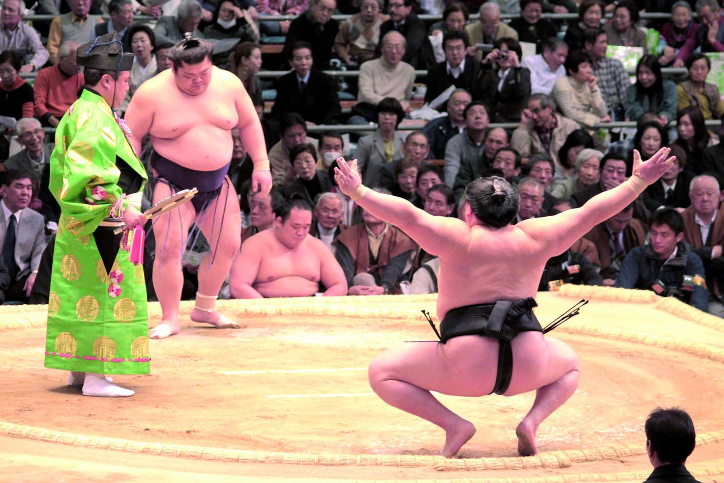 La Mongolie, l'autre poids-lourd du sumo qui bouscule le Japon