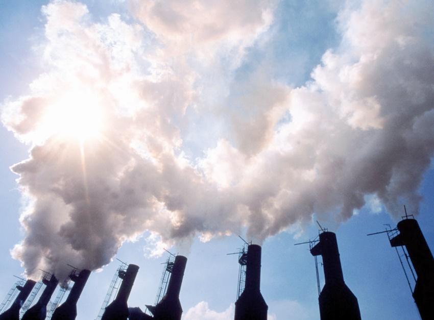 Des ONG appellent à maintenir l'harmonie entre l'humanité et la nature afin de préserver le climat