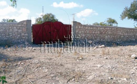 Les terrains non bâtis, source de problèmes écologiques et sécuritaires à Essaouira