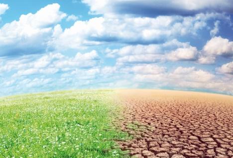 Les changements climatiques, un éventuel  danger pour les entreprises