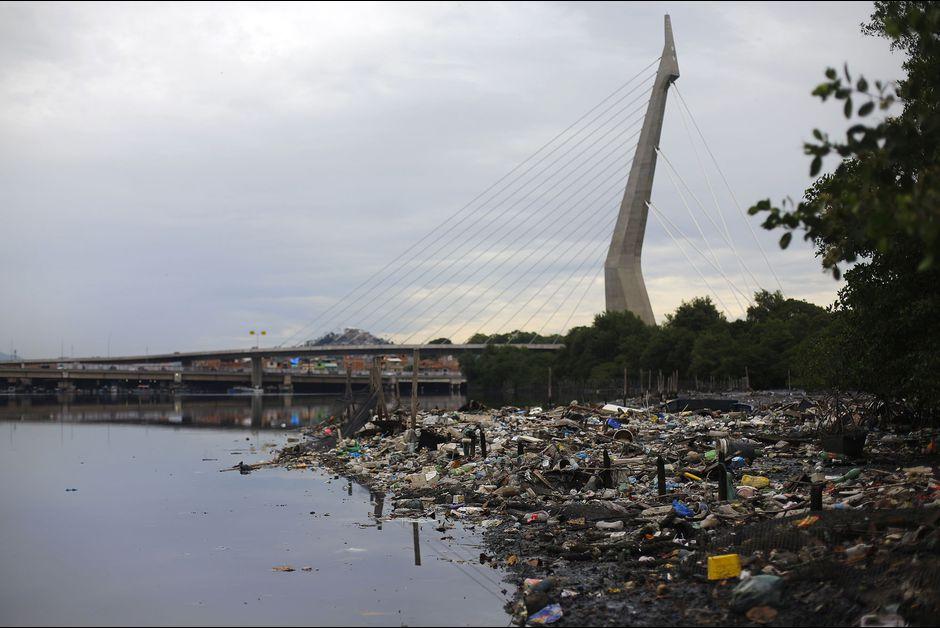 Sur une île polluée de Rio, un écologiste brésilien rêve de miracle