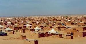 Les camps de Tindouf, lieux privilégiés de recrutement de jihadistes