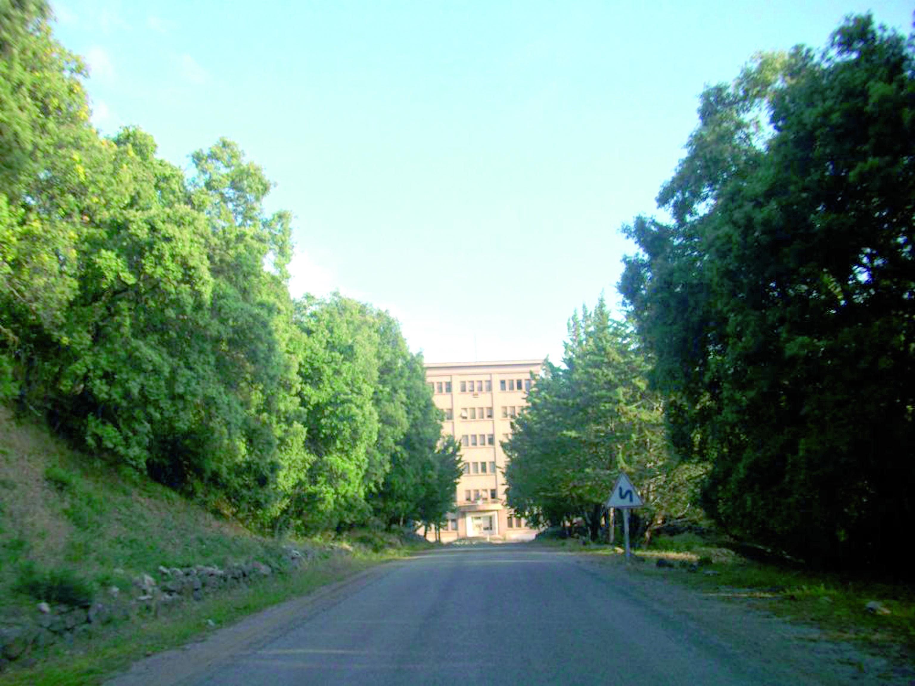 Souvenirs d'un long séjour  au sanatorium de Bensmim
