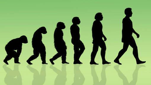 Une autre espèce d'êtres humains a peut-être  survécu à l'âge de glace
