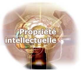 Naissance de la Coalition marocaine  pour la propriété intellectuelle