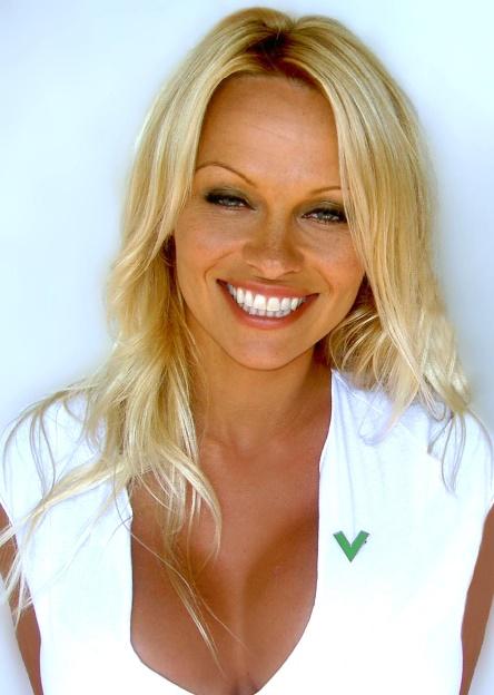 Le premier job des stars : Pamela Anderson