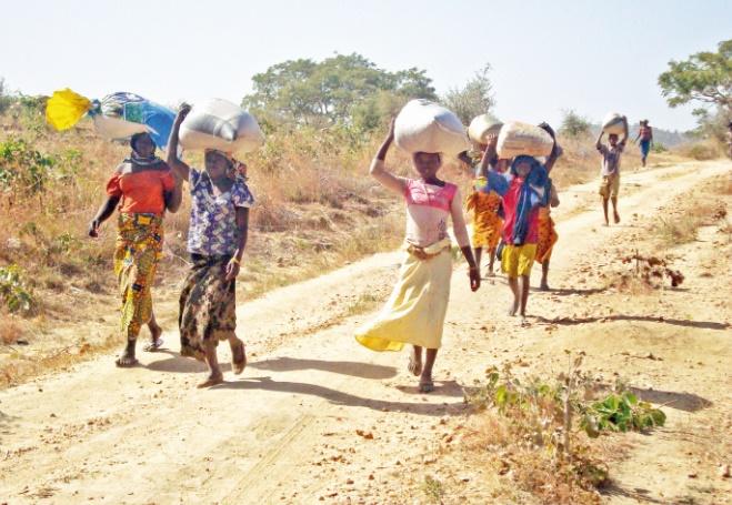 Cameroun : Propositions pour une double citoyenneté fructueuse